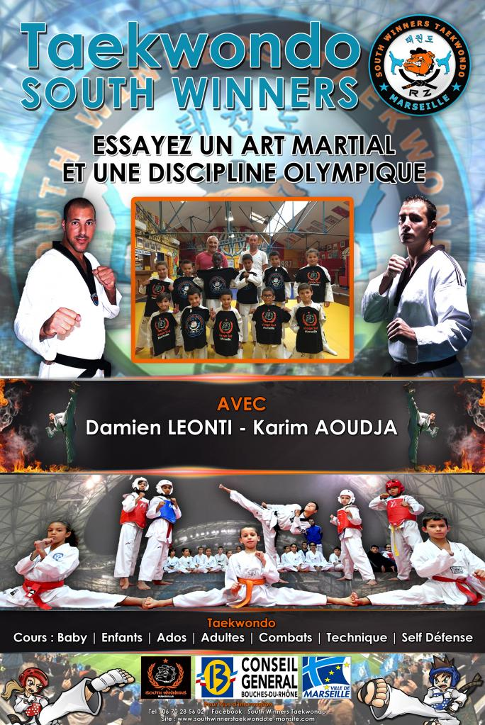 Affiche SOUTH WINNERS TAEKWONDO 2015_2016