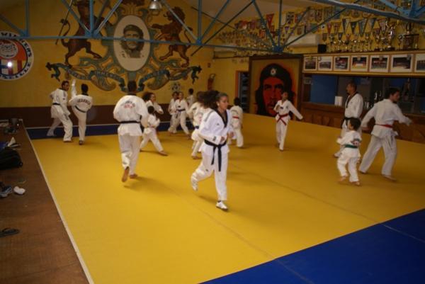 Le Petit dernier le SW Taekwondo